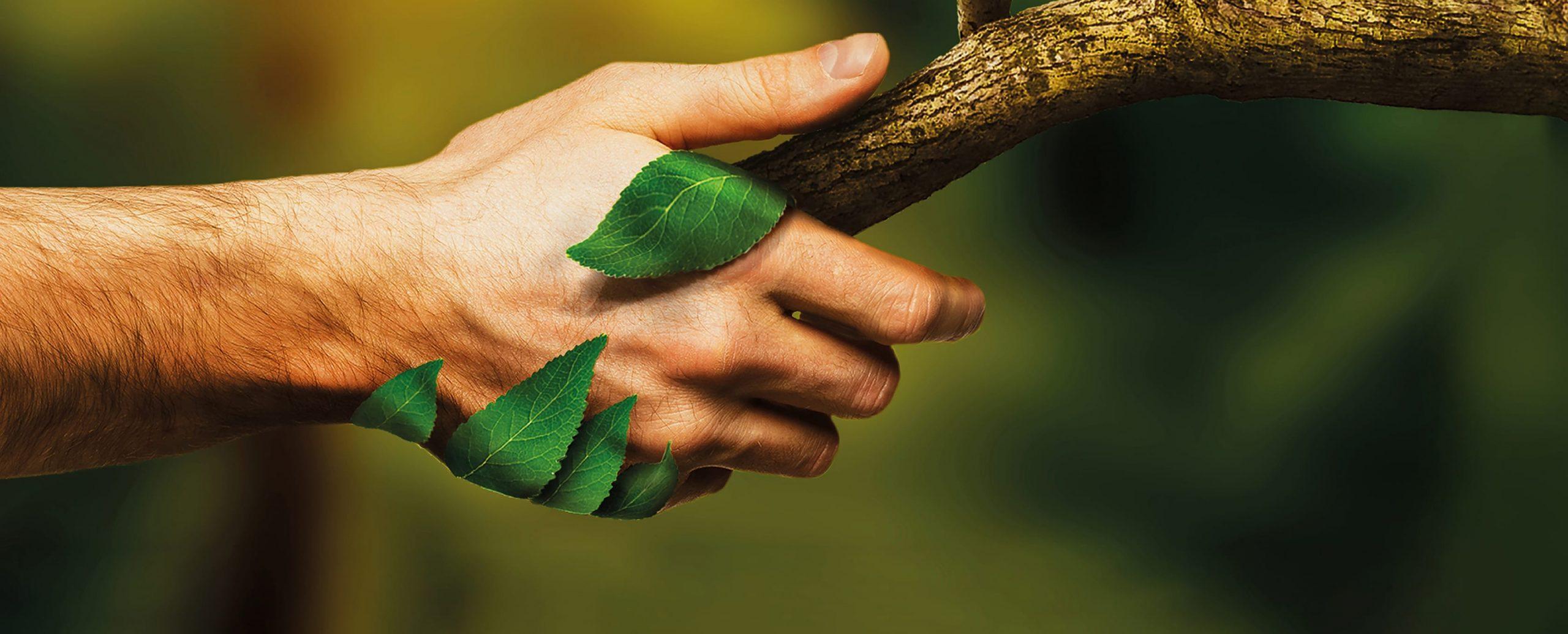 nachhaltigkeit bei MEDA